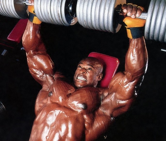 bodybuilder gewicht heffen