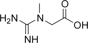 creatine-molecule