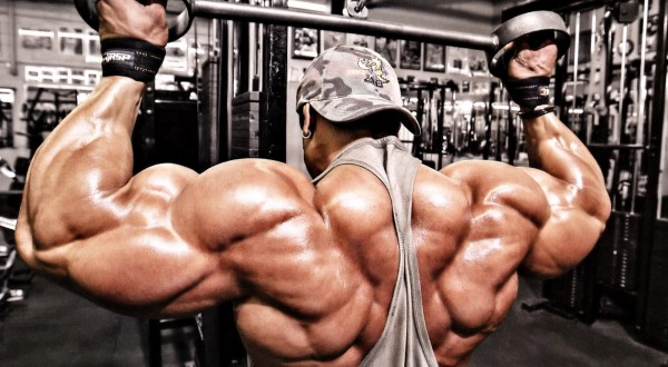 Bulk muscle training