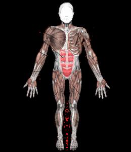 spieren-op-kaart